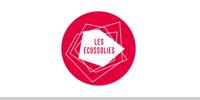 Conseil - Les Ecossolies - Social Planet
